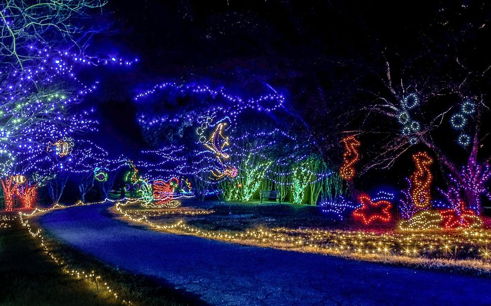 it is a magical time of year in coastal virginia no matter where you turn you can see that the holidays have special meaning in hampton roads